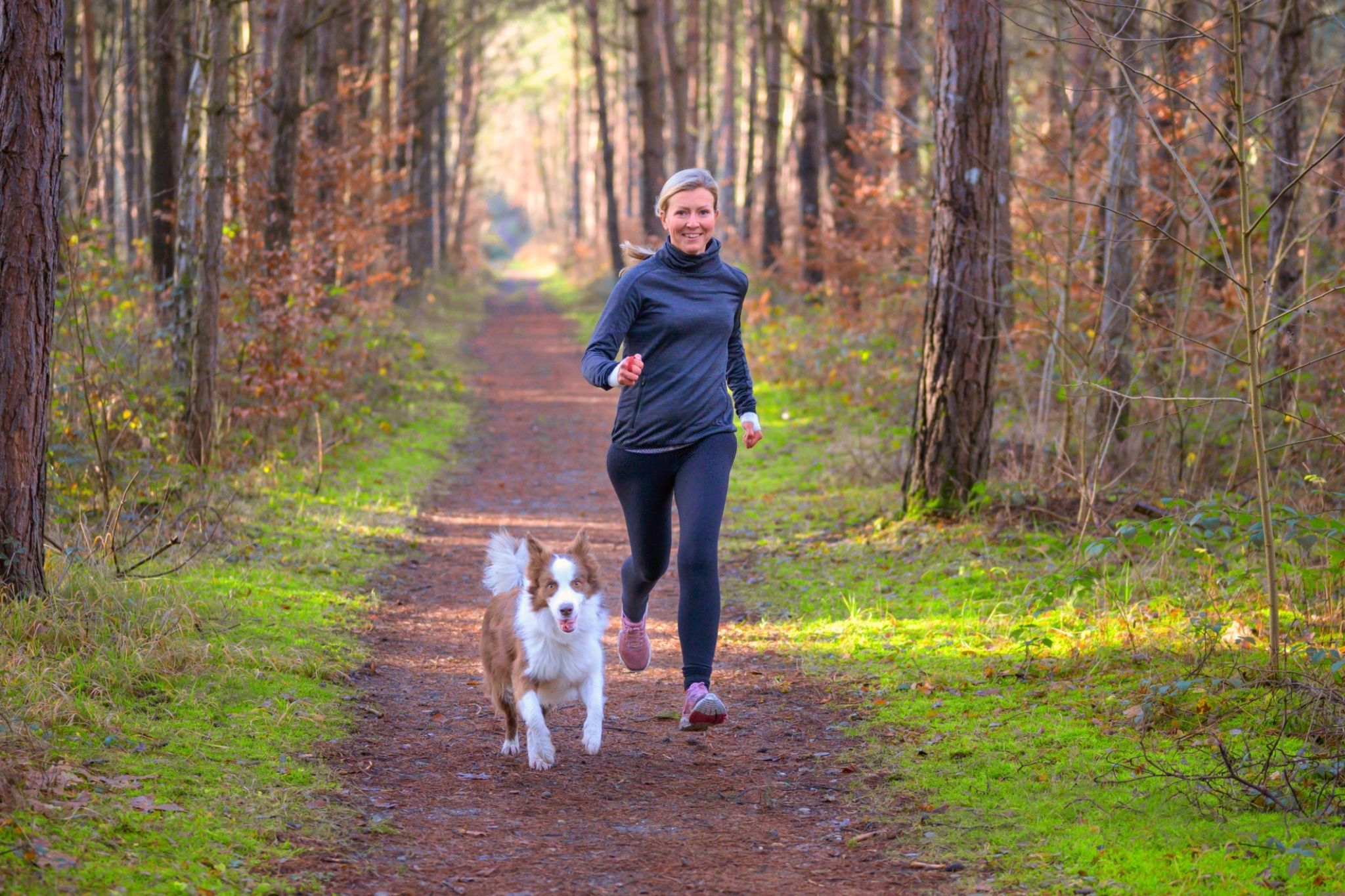 exercising a dog with elbow dysplasia