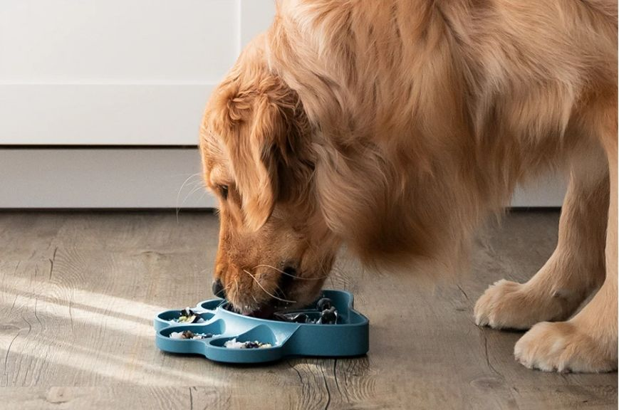 Lick Mat Guide: Recipes, Benefits and How to Clean