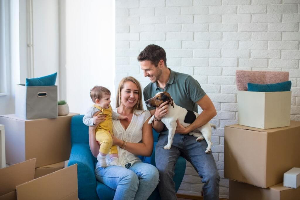 How To Keep Your Pets Healthy & Safe When Moving Home