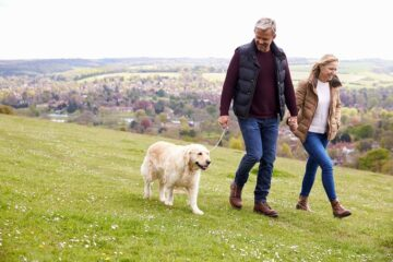 How To Train An Older Dog To Walk On A Leash? Good Tips